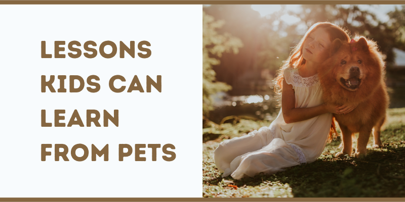 Lessons Kids Can Learn From Pets